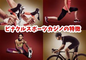 ピナクルスポーツの画像