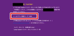 ラッキーカジノ登録方法画像4-1