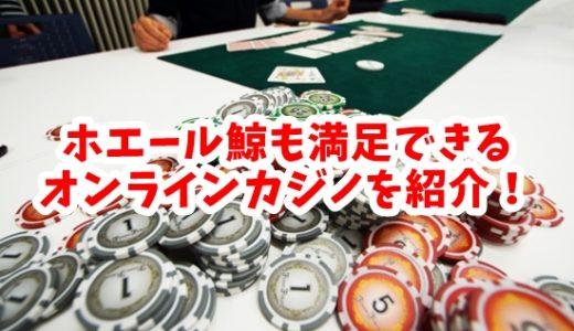 MAXベット650万円!ホエール(鯨)向きのオンラインカジノ紹介!