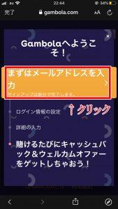ギャンボラカジノ登録画面2