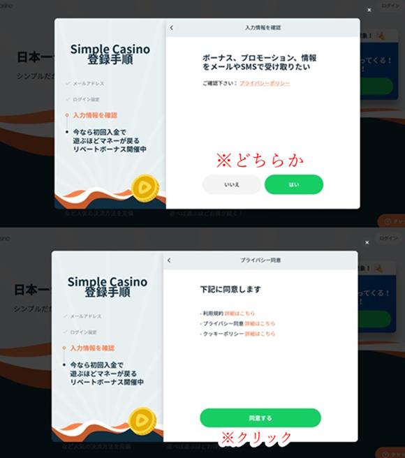 シンプルカジノ登録画面10