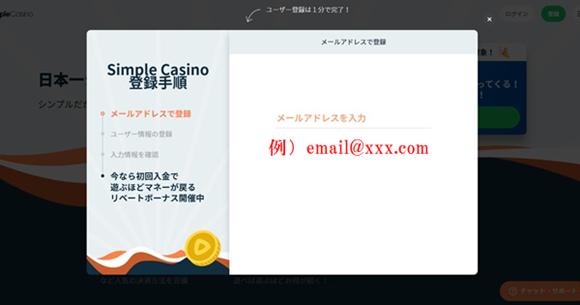 シンプルカジノ登録画面2