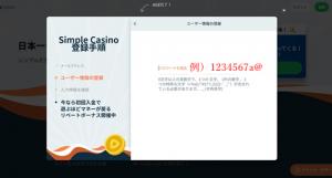 シンプルカジノ登録画面3